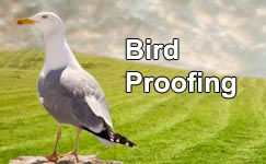 Smart Solutions for Bird Control