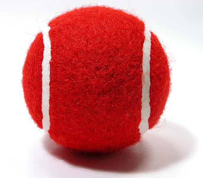 dog fetch ball   red easytek new zealand